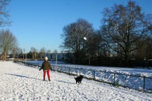 paddy-sneeuw04