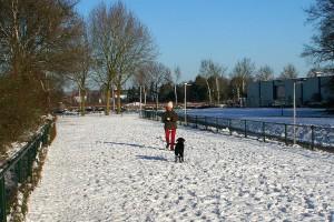 paddy-sneeuw07