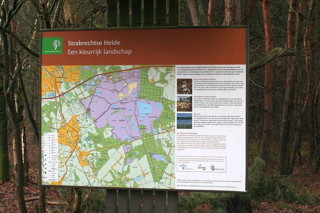 P&B-Strabrechtse Heide-150221-01