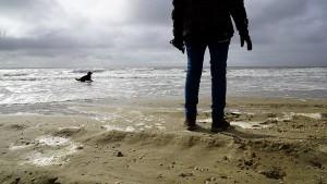 paddy-aan-zee04