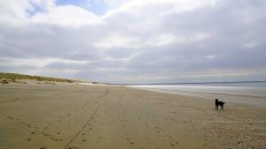 paddy-aan-zee16