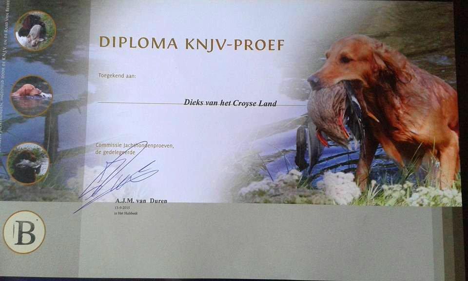 B-diploma-Paddy