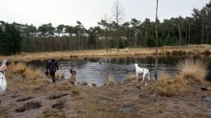 151227 Doggy Date-Stiphoutse-bossen021
