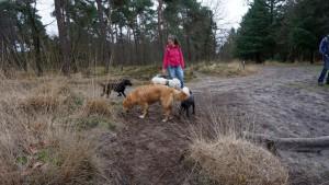 151227 Doggy Date-Stiphoutse-bossen031